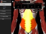 iMuscle Home by 3D4Medical